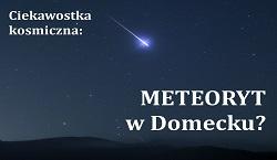 meteoryt Domecko logo.jpeg