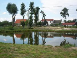 Wiata i stawek w Wawelnie