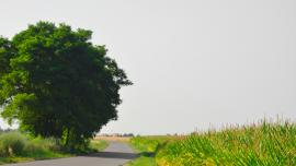 Galeria krajobrazy Gminy