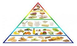 dietetyczne warszt logo.jpeg